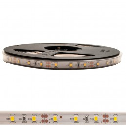 Bande LED 40W 12V IP65 SMD2835 5M