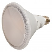 Spot PAR38 20W LED COB blanc chaud